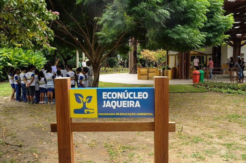 Enoclúeo-da-Jaqueira.jpg