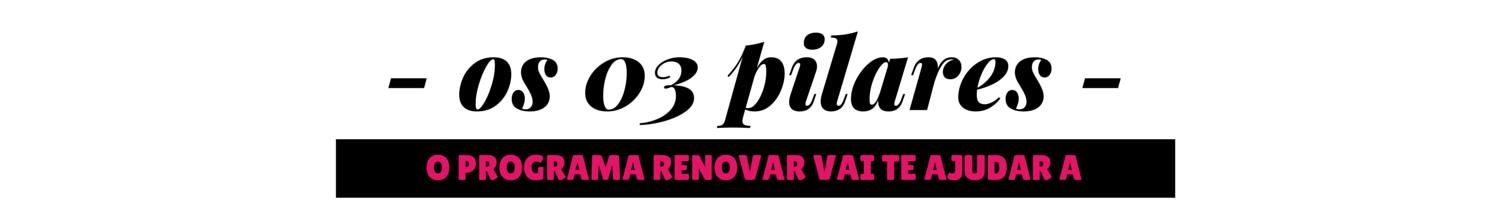 03 pilares.png