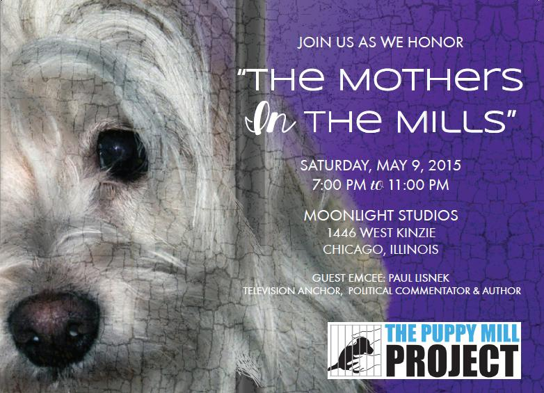 Mothers in the Mills | Powered By GiveSmart