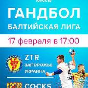 Гандбол. Балтийская лига «ZTR» Запорожье VS «COCKS» Рийхимяки