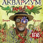 Акваріум, БГ 65