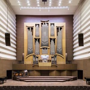 Праздничный концерт органной музыки