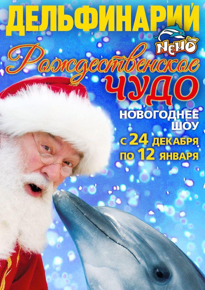 Новогоднее шоу «Рождественское чудо»