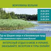«Жемчужины Волыни». Тур на Шацкие озера, в Беловежскую пущу и замки Волыни