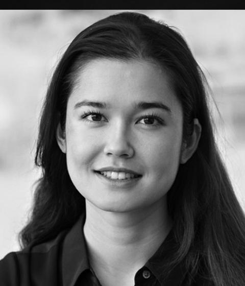 Laura Grimmelmann