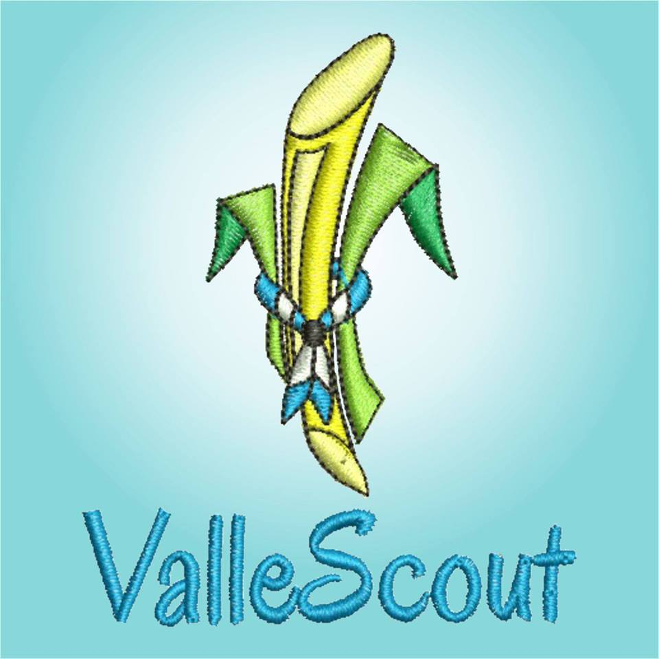 Vallescout15497639511549763951