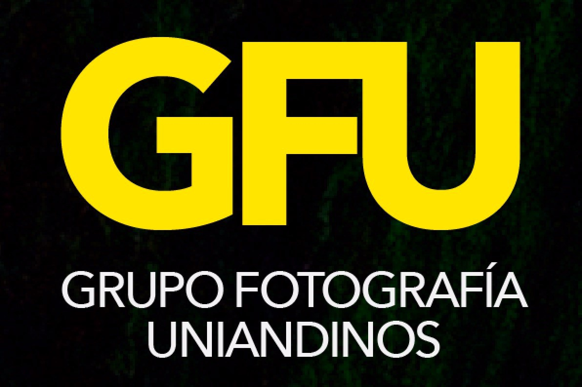 Logogfu15701137391570113739