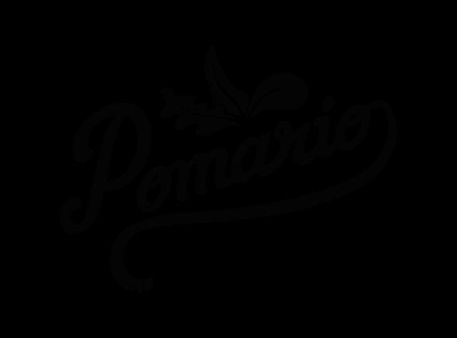 Logopomarionegro15204768061520476806