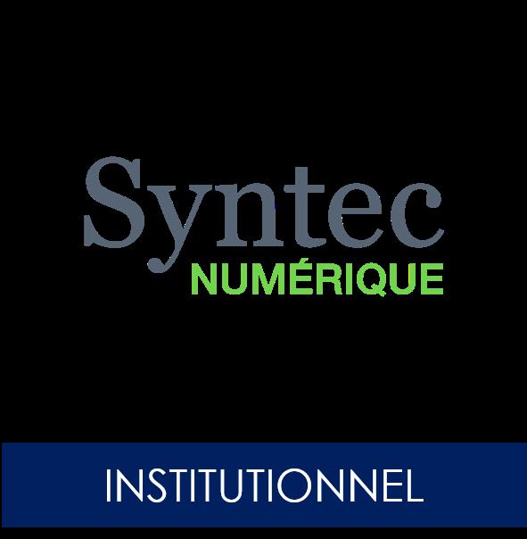 Syntecnumerique15168945151516894515