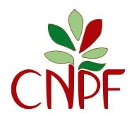 Cnpf15187899441518789944