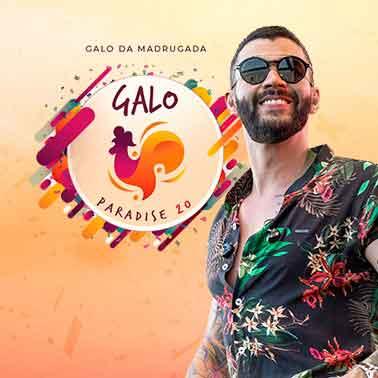 CAMAROTE GALO PARADISE