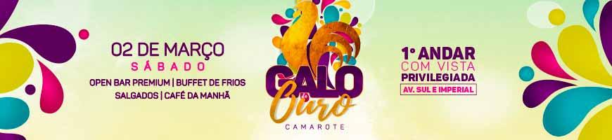 CAMAROTE GALO DE OURO NO GALO DA MADRUGADA