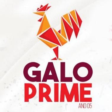 CAMAROTE GALO PRIME NO GALO DA MADRUGADA