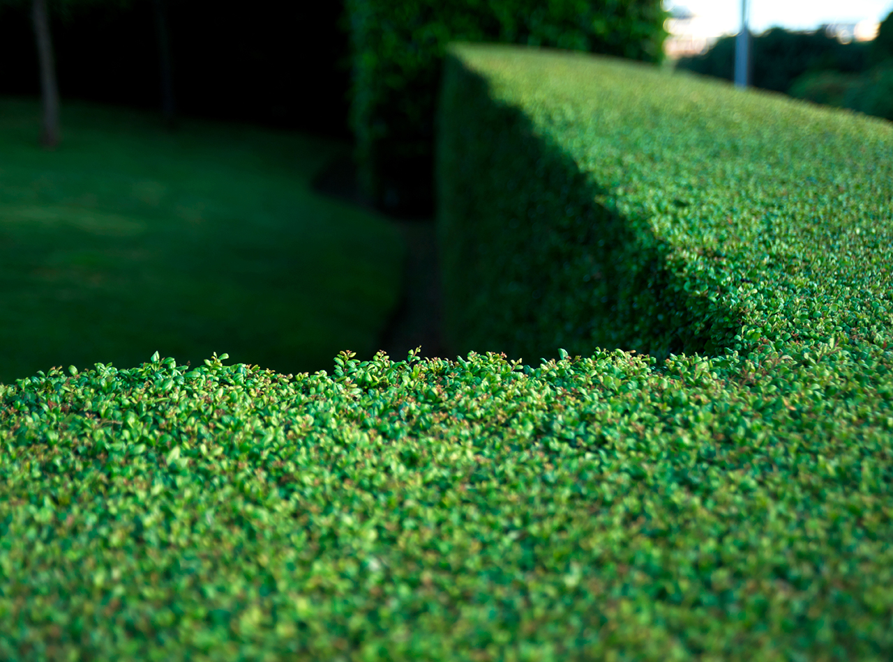Inflation Hedges: What's in Your Portfolio?