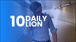 DailyLion experiment by WhiteLion Agency