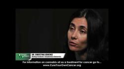 Video interview of Cristina Sanchez