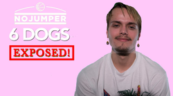 6 Dogs Exposed