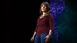 TED                              :Machine intelligence makes human morals more important | Zeynep Tufekci