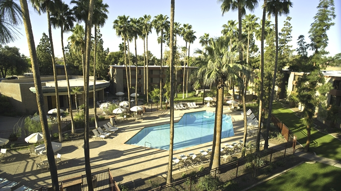 Heated Pool and Surrounding Trees