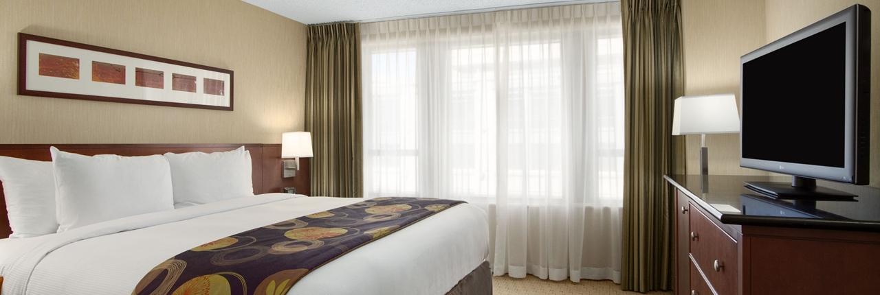 King Standard Suite