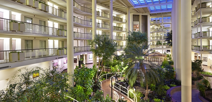 Embassy Suites Parsippany Hotel- Atrium Dusk