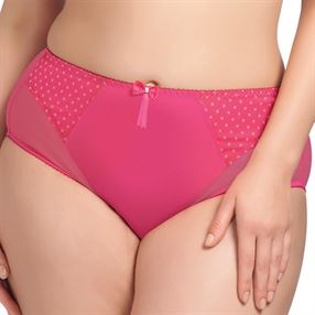 Picture of Elomi Betty Brief Raspberry