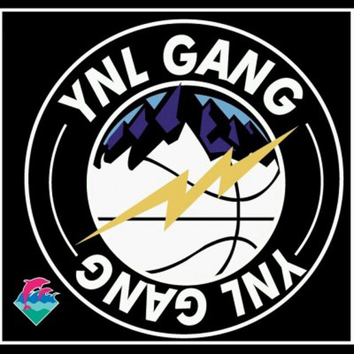Ynl Gang