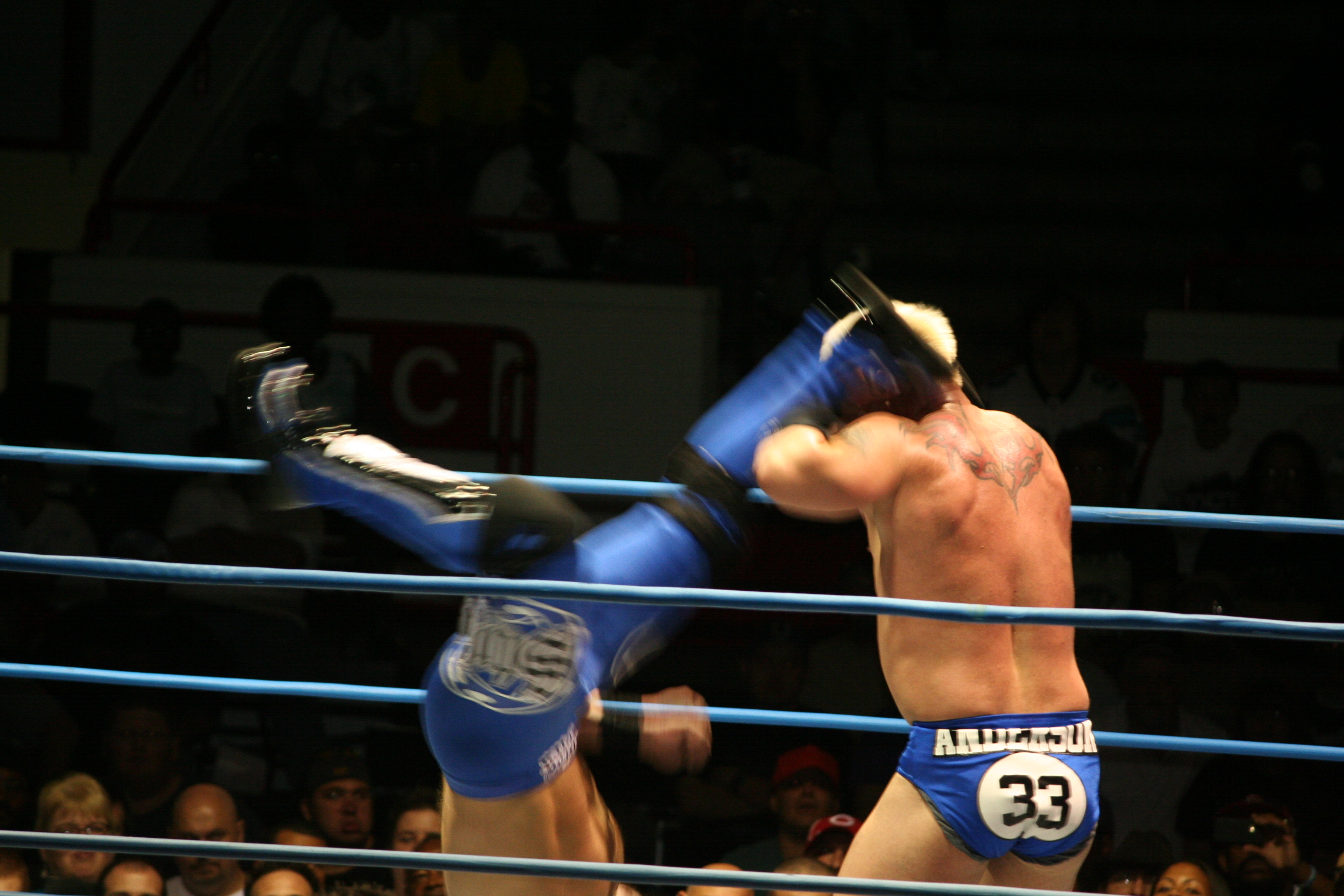 Styles performing the Pelé Kick on Mr. Anderson.