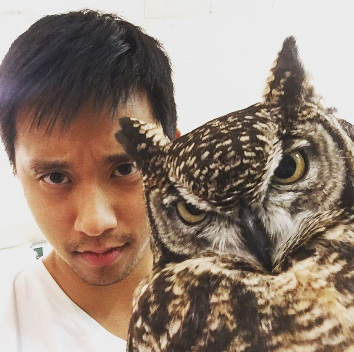 "Benny with an owl. <span data-mce-style=""color: #71b8e4;"" style=""color: #71b8e4;""><a class=""tooltippableCarat"" data-cited_by=""ordazdon"" data-citer_is_verified=""1"" data-citer_rank=""Staff"" data-mce-href=""../../../../newmediabenny/28409/"" data-username=""https://www.instagram.com/bennyluo/"" href=""../../../../newmediabenny/28409/""><sup>[6]</sup></a></span>"