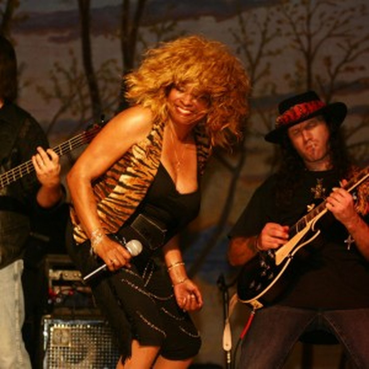 Simply the Best, Tina Turner Revue