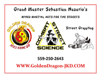 Grand Master Sebastian Nazario's Mixed Martial Arts For The Streets