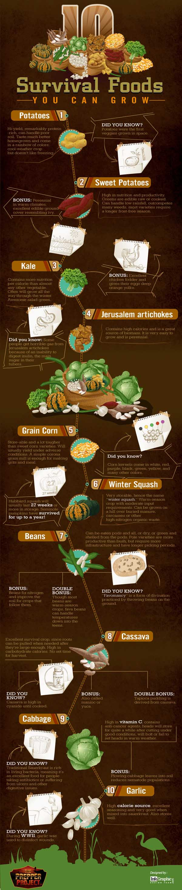 Survival Food Graphic