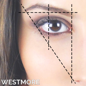 Westmore Method Eyebrow Transplantation