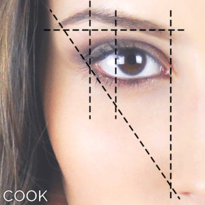 Cook Method Eyebrow Transplantation