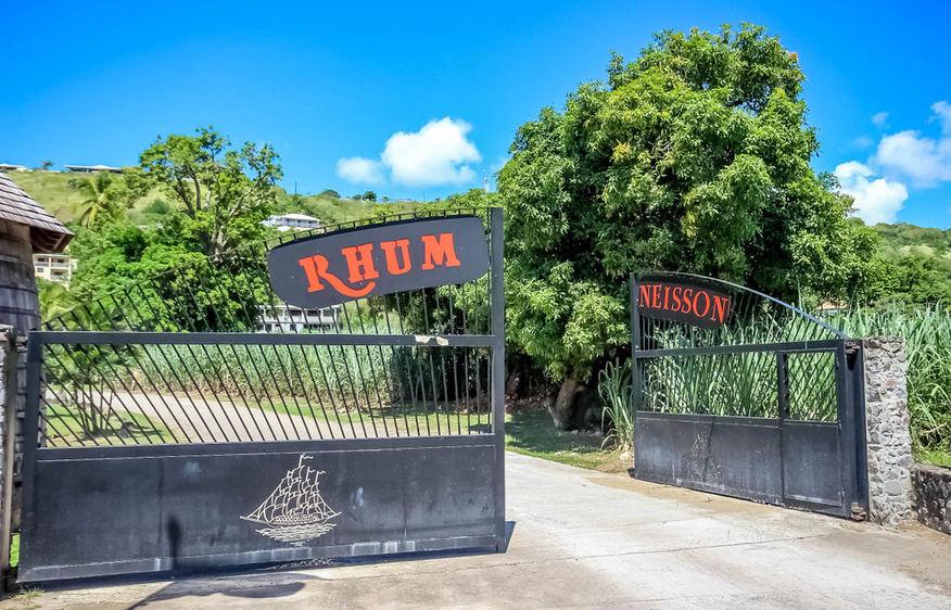 actvite Neisson distillery Martinique