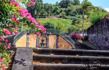 actvite Les Ruines de Saint-Pierre Martinique