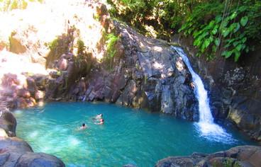 actvite Saut D'acomat - Pointe Noire  Guadeloupe