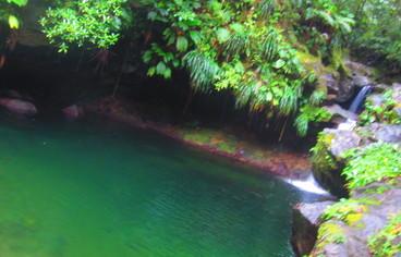 actvite Bassin Paradise - Capesterre-Belle-Eau  Guadeloupe