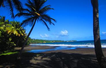 actvite Plage de Grande Anse - Trois Rivières  Guadeloupe