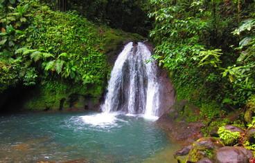 actvite Cascade aux Écrevisses  Guadeloupe