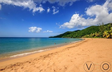 actvite Plage de Grande Anse - Deshaies Guadeloupe