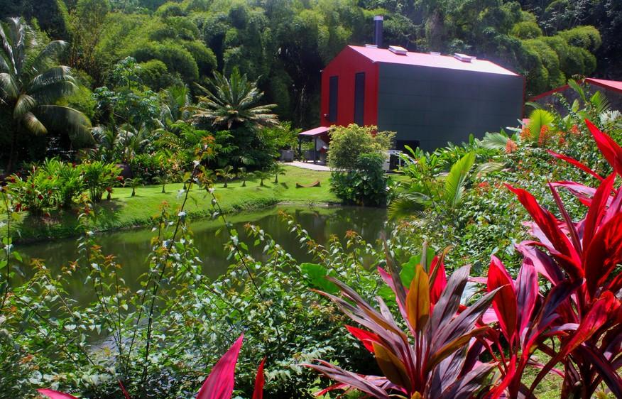actvite JM distillery  Martinique