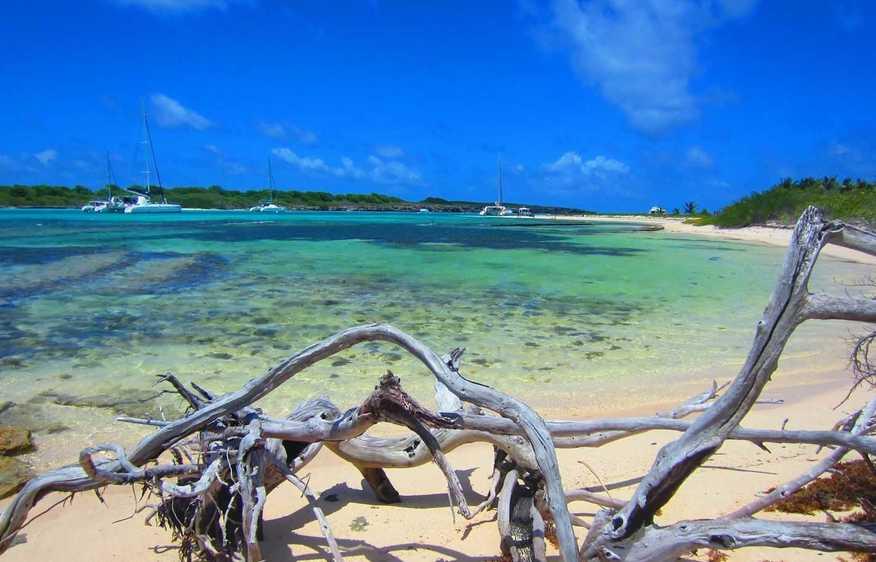 actvite Iles de la Petite Terre  Guadeloupe