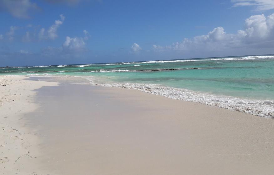 actvite Plage des Raisins Clairs  Guadeloupe