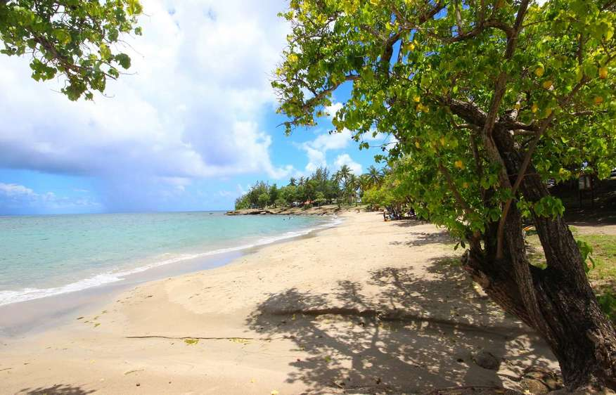 photo Martinique Sainte-Luce