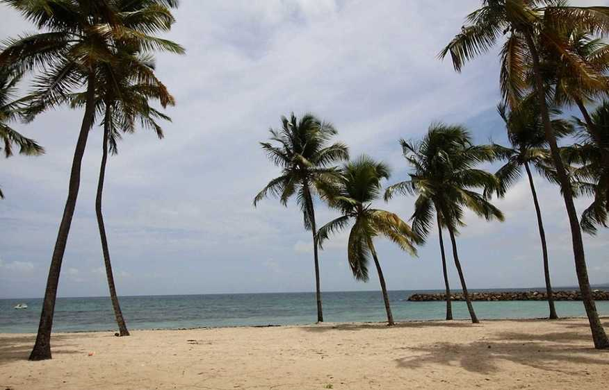 location Appartement Dolce Gosier Guadeloupe
