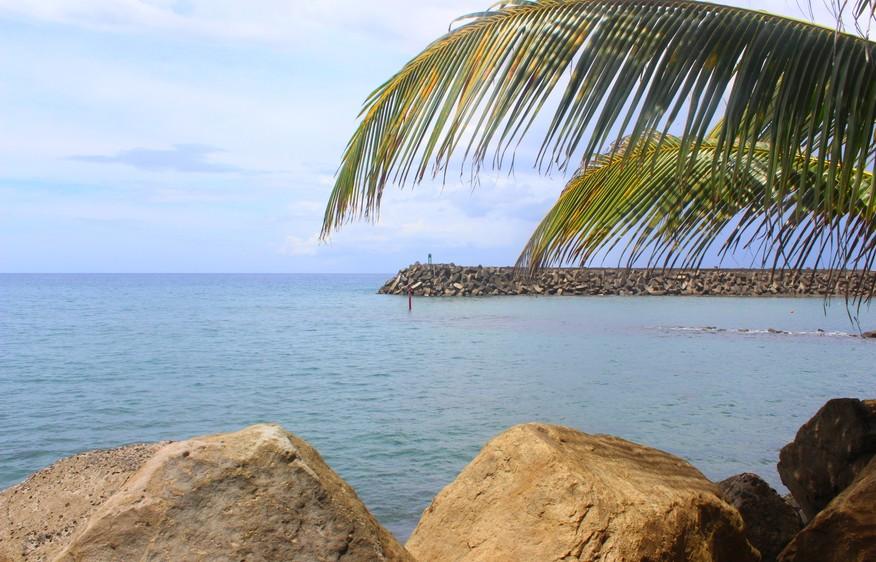 photo Martinique Grand Rivière