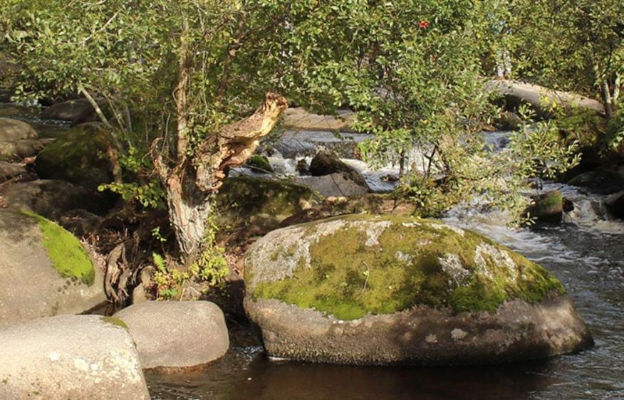 photo Bretagne Sud Riec sur Belon