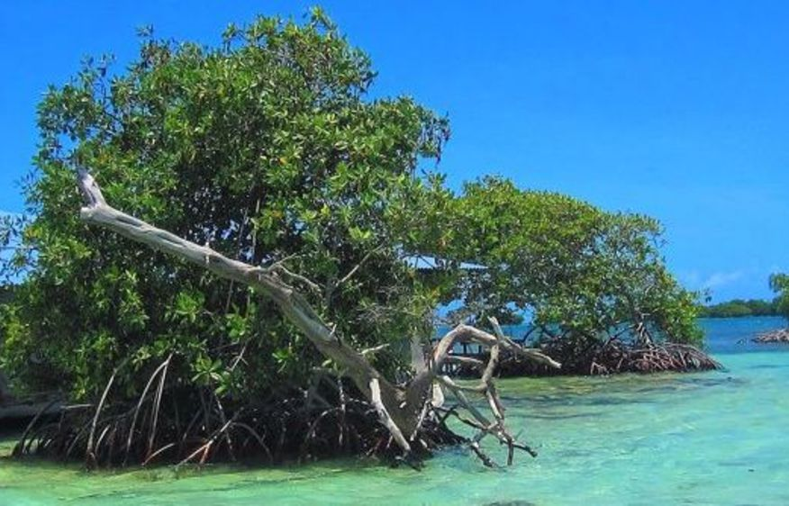 photo Guadeloupe Gosier