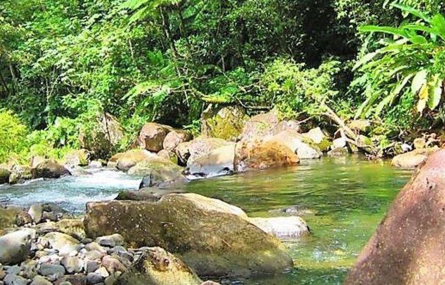 photo Guadeloupe Vieux-Habitants